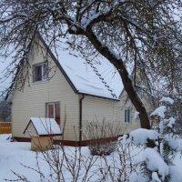 Lithuanian winter :: silvestras gaiziunas gaiziunas