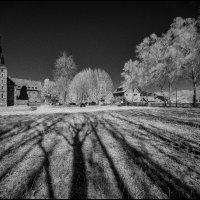 Замок, деревья и тени :: Николай Гирш