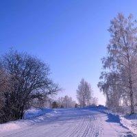 Зимняя дорога :: Вера Андреева