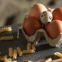 Яйца :: Яна Горбунова