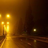 Туманное утро.... :: Стил Франс