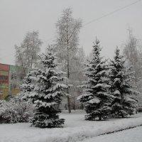 Зима в городе. :: Маргарита ( Марта ) Дрожжина