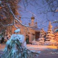 Зима-холода :: Denis Makarenko