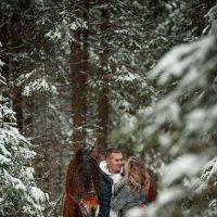 Однажды в зимнем лесу.... :: Ольга Семина