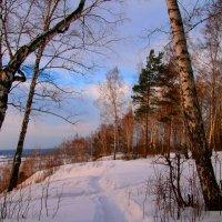 Середина января :: владимир тимошенко