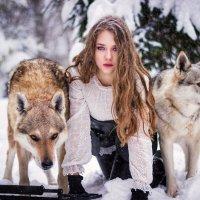 Волчья стая :: Ирина .