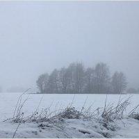 Туман. :: Валерия Комова
