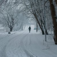 Зима 2 :: Edita Rimkute