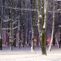 Вечерние огни :: Galina M.