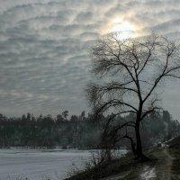 В плеске небесных волн. :: Volodymyr Shapoval VIS t