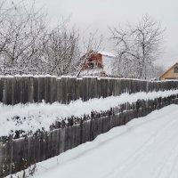 Седой зимы кардиограмма :: Евгения Куприянова