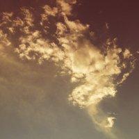 Вечернее облачко. :: Татьяна