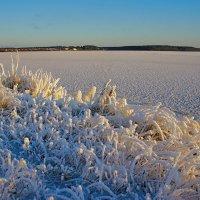 Мороз и солнце :: Александр Трухин