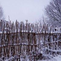 Оригинальный забор :: Антонина Гугаева