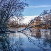 Замерзшая река ....... :: Александр Селезнев