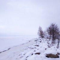 Зимняя зарисовка :: Роман Алексеев