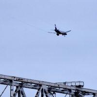 железная птица над железным мостом :: vg154