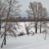 Зима - одна, интересы - разные...) :: Тамара Бедай