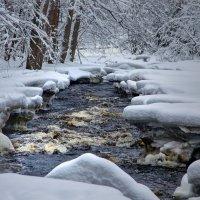 Если бежать быстро, не замёрзнешь! :: Ирэна Мазакина