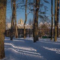 На дорожках Александровского парка. :: Олег Бабурин