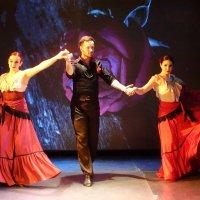 Испанский танец :: Сергей