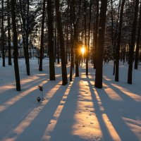 Февральский закатный вечер. :: Виктор Евстратов