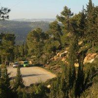 Парк в окрестностях Иерусалима :: Александра
