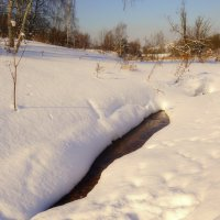 Снежный февраль :: Наталья Лакомова