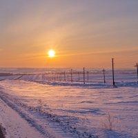 Морозное утро :: Михаил Соколов