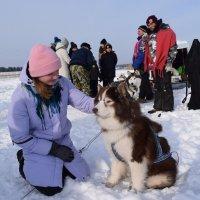 В рамках фестиваля зимний Драйв в Карелии. :: Андрей