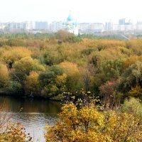 Осень в красках :: Колибри М