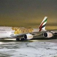 A380 (Домодедово) :: Игорь Рязaнoв