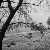 Везде следы молчания... :: Volodymyr Shapoval VIS t