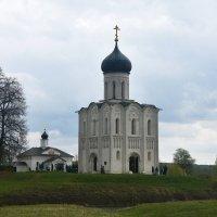 Владимирская область. Церковь Покрова на Нерли 1165г. :: Наташа *****