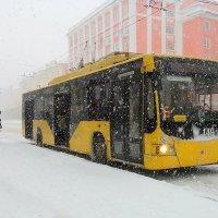 А снег идет, а снег идет... :: Анна Приходько