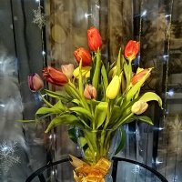 Букет Тюльпанов :: ОКСАНА ЮРЬЕВНА ШВЕЦ