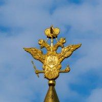 Воскресенские ворота :: Grey Bishop