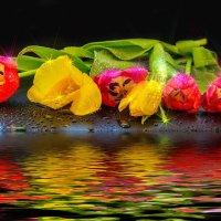 В тепле без влаги цветы вянут, коль засохнут — не спасти. :: Виктор Малород