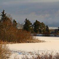 У замершего озера :: Marina Pavlova