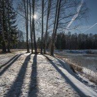 Пересечение линий... :: Олег Бабурин