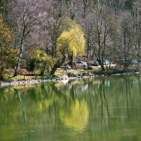 Весна пришла ... :: Владимир Икомацких