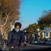 LA Curson Avenue :: Valera Kozlov