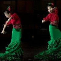Фламенко. Фламенко на сцене. :: aWa