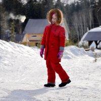 Прогулка по прошлогоднему снегу :: Владимир Куликов