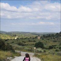 Все дороги, вся жизнь впереди! :: Валерий Готлиб
