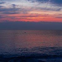 Солнце просыпается... :: Ирина Шарапова