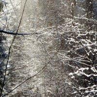 Осыпающийся снег :: Андрей Снегерёв