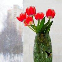 Тюльпаны натюрморт :: Alexander Borisovsky