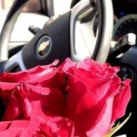 Дарите женщинам цветы... :: Елена Вишневская