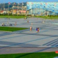 Олимпийский парк в Сочи :: Андрей Кобриков